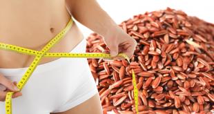 Cách giảm béo hiệu quả với gạo lứt sau 2 tuần sử dụng