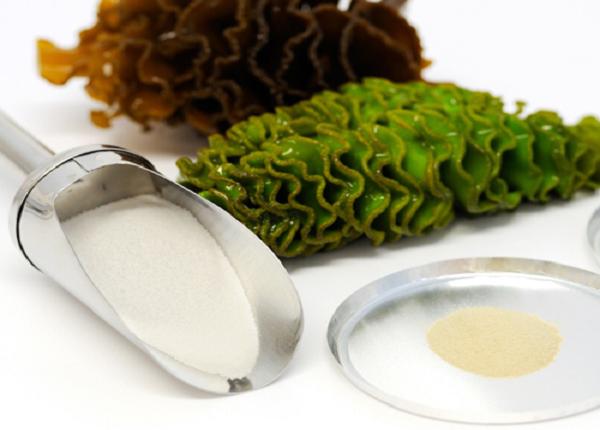 Rong nâu xuất hiện phổ biến trong bữa ăn của người Nhật