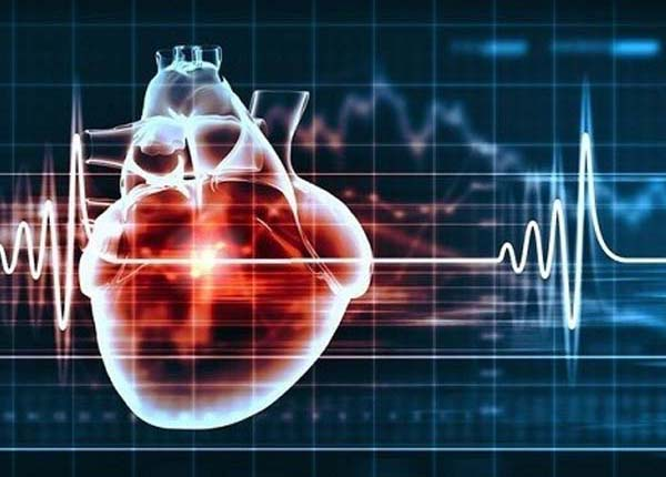 Nhịp tim bình thường của một người khỏe mạnh sẽ dao động trong khoảng 60 – 80 lần trên một phút