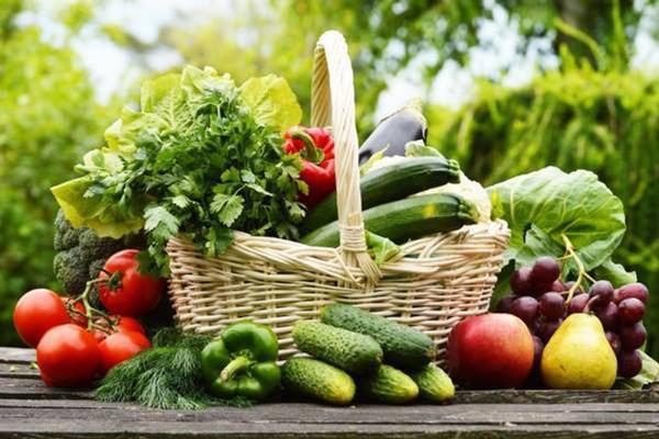 Chế độ ăn nhiều rau xanh rất tốt và cần thiết cho mọi người