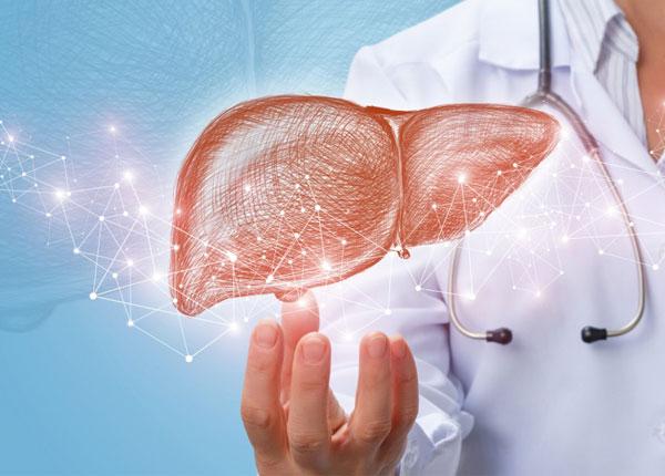 Tìm hiểu về chứng bệnh gan nhiễm mỡ