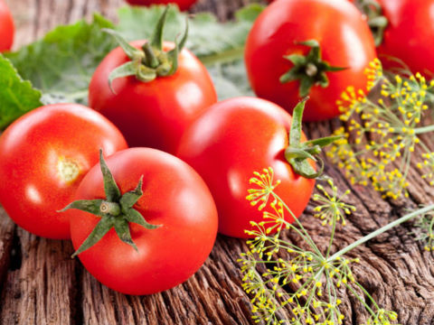 Ăn cà chua có thể khiến người huyết áp thấp đau đầu, hoa mắt, chóng mặt