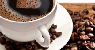 ly-cafe-500x500_c