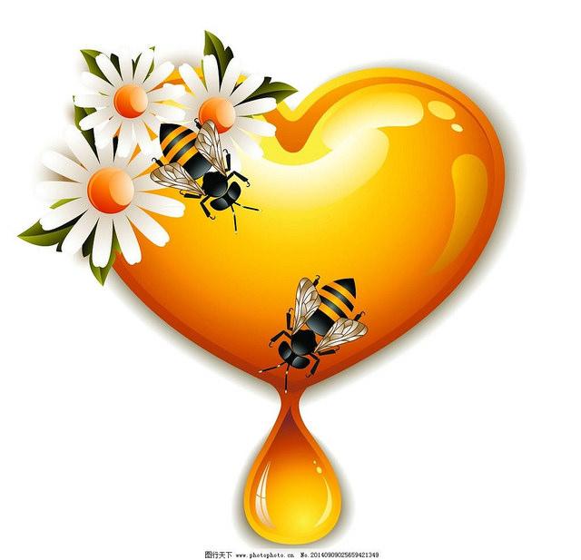 Một số bài thuốc chữa bệnh áp dụng với Mật ong
