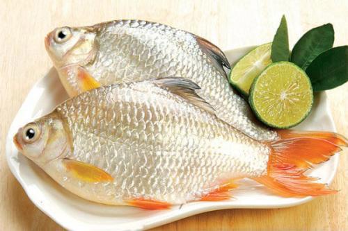 Những bộ phận nào của cá có thể gây nguy hại sức khỏe