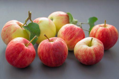 Táo loại quả có hàm lượng giá trị dinh dưỡng cao