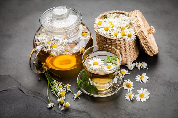 trà hoa cúc giúp cơ thể thư giãn và ngủ ngon hơn