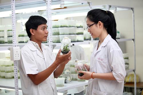 Cơ hội việc làm lớn đối với sinh viên ngành y dược